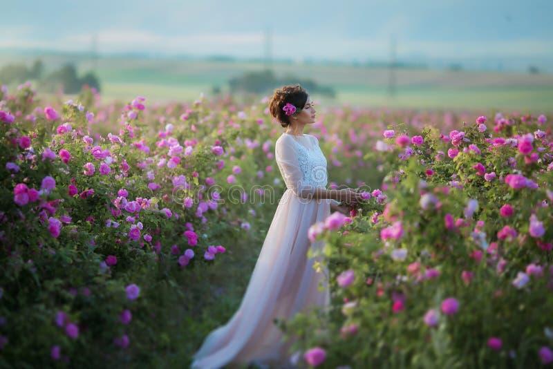 Lange huwelijkskleding, mooi kapsel en een gebied van bloemen royalty-vrije stock foto's