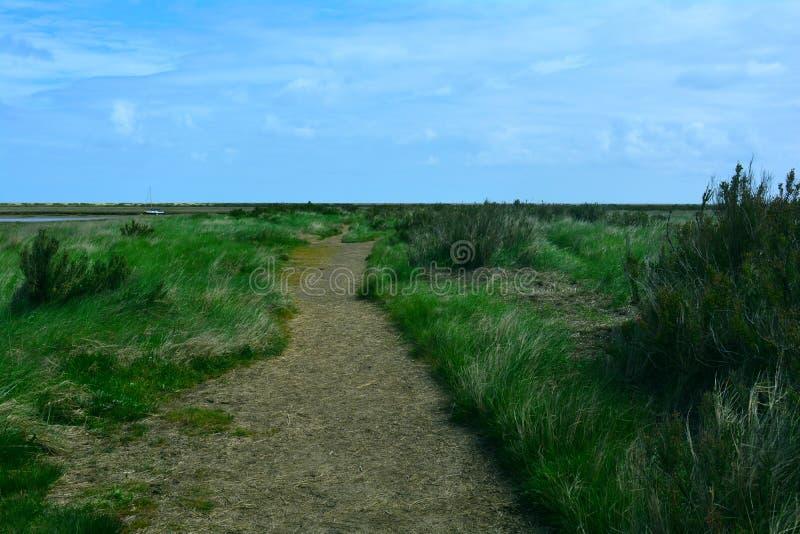 Lange kustgang/weg dichtbij het strand, Blakeney-Punt, Norfolk, het Verenigd Koninkrijk stock afbeelding