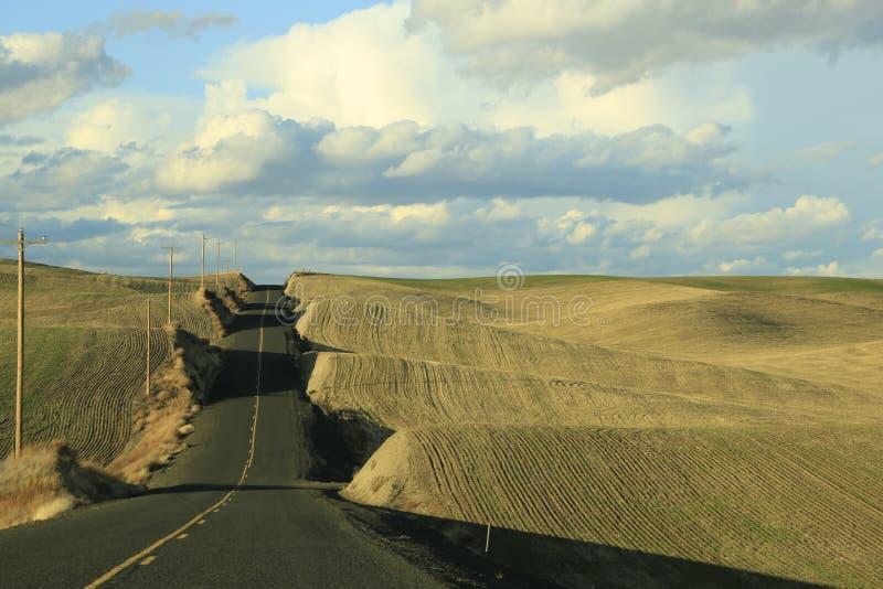 Lange Landstraße mit Kornfeldern im Palouse lizenzfreie stockfotos