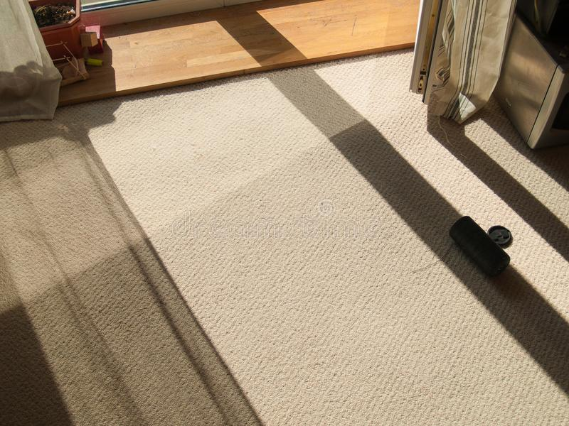 Lange schaduwen op helder tapijt stock foto