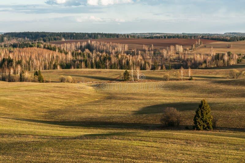 Lange schaduwen van de staande zon op heuvelvelden in het vroege voorjaar royalty-vrije stock afbeeldingen