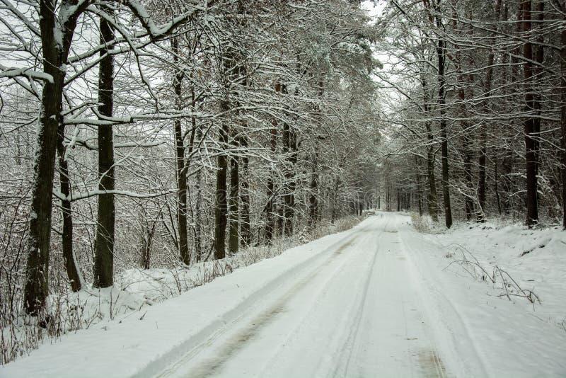 Lange schneebedeckte Straße durch mystischen Wald der Schönheit lizenzfreies stockfoto