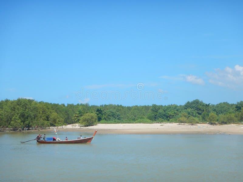 Lange staartboot die mangrovebos overgaan royalty-vrije stock afbeeldingen