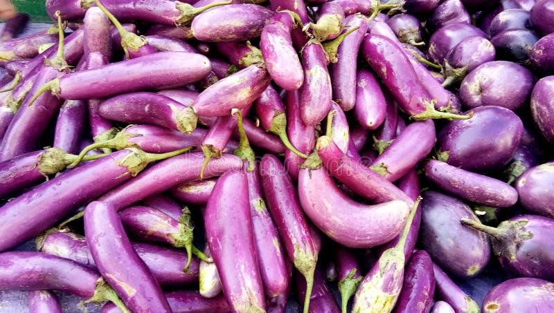 Lange verse organische ruwe purpere eierplant of aubergine stock foto's