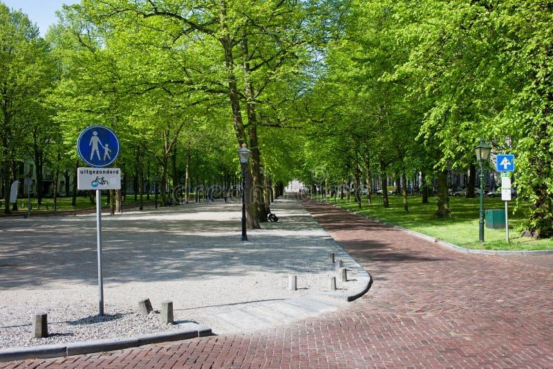 Lange Voorhout w melinie Haag zdjęcia stock