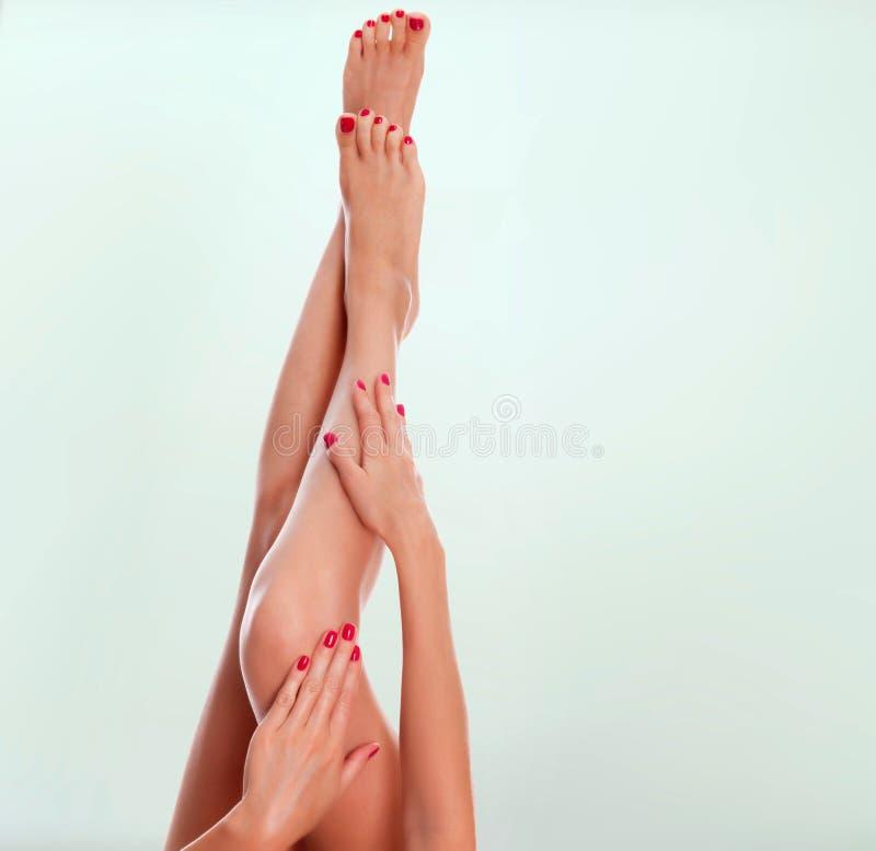Lange vrouwelijke benen met vlotte huid royalty-vrije stock foto