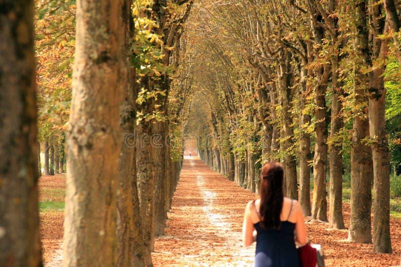 Langer bewaldeter Weg mit einer Frau, die hinunter ihn geht lizenzfreies stockfoto