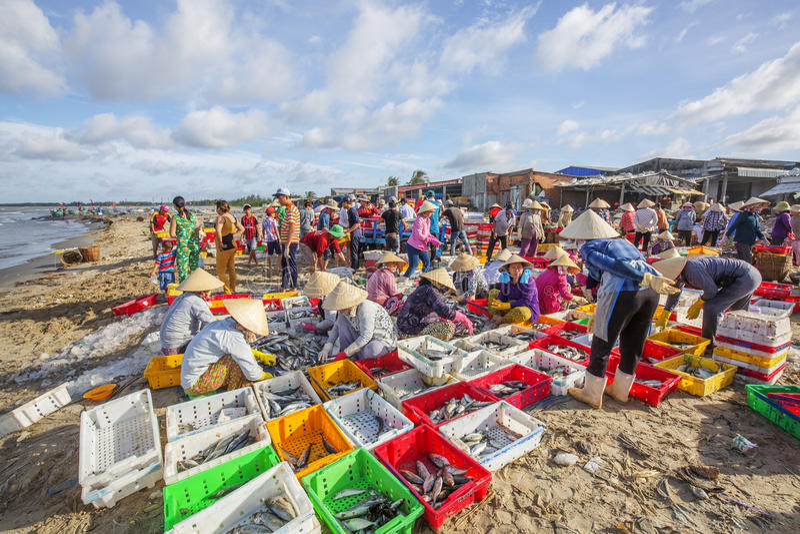 Langer Hai-Fischmarkt lizenzfreies stockbild