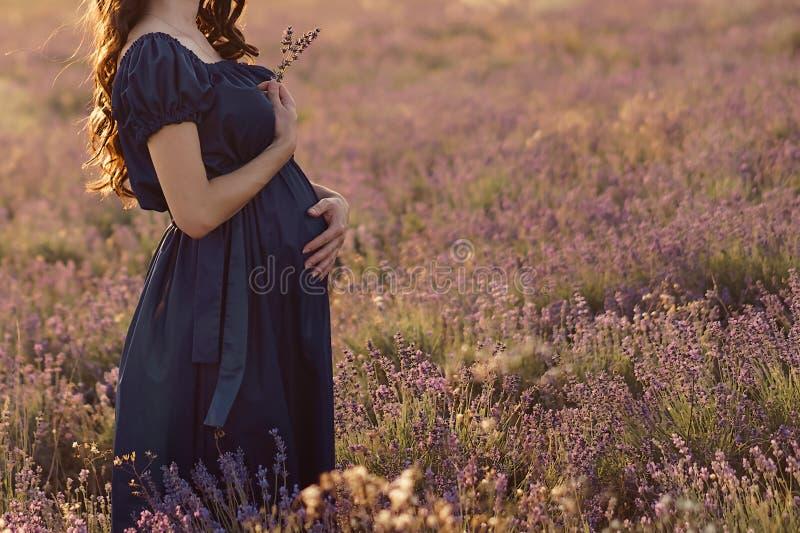 Langharige zwangere vrouw die zich op een zonnige dag op een lavendelgebied bevinden met een boeket van lavendel stock afbeeldingen