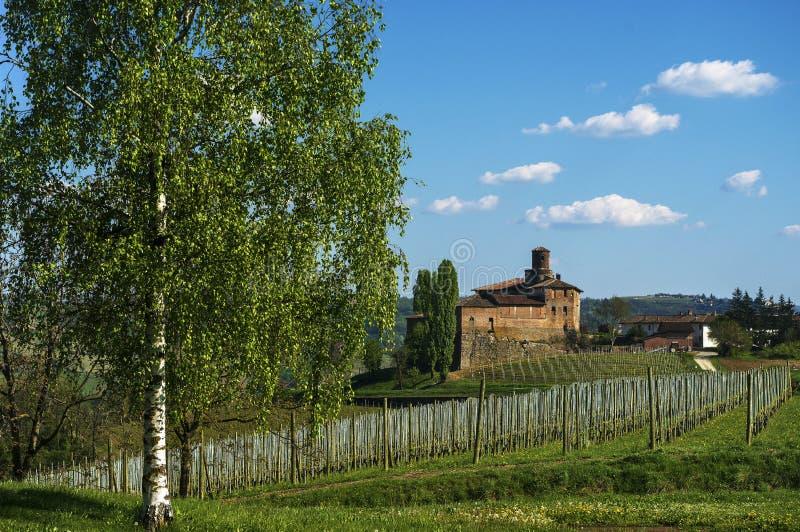 Langhe - Barolo, het Della Volta-kasteel royalty-vrije stock afbeeldingen