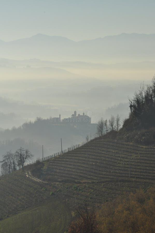 Langhe i Roero wzgórza, Piemonte, Włochy fotografia royalty free