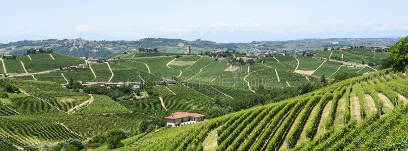 Download Langhe, Vineyards Royalty Free Stock Image - Image: 33225236