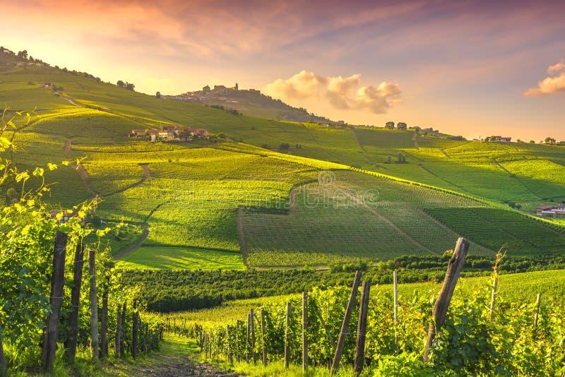 Langhe vineyards view, Barolo en La Morra, Piemonte, Italië, Europa royalty-vrije stock afbeelding