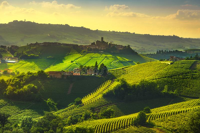 Langhe vineyards view, Castiglione Falletto and La Morra, Piedmont, Italy Europe. Langhe vineyards sunset panorama, Castiglione Falletto and La Morra, Unesco stock image