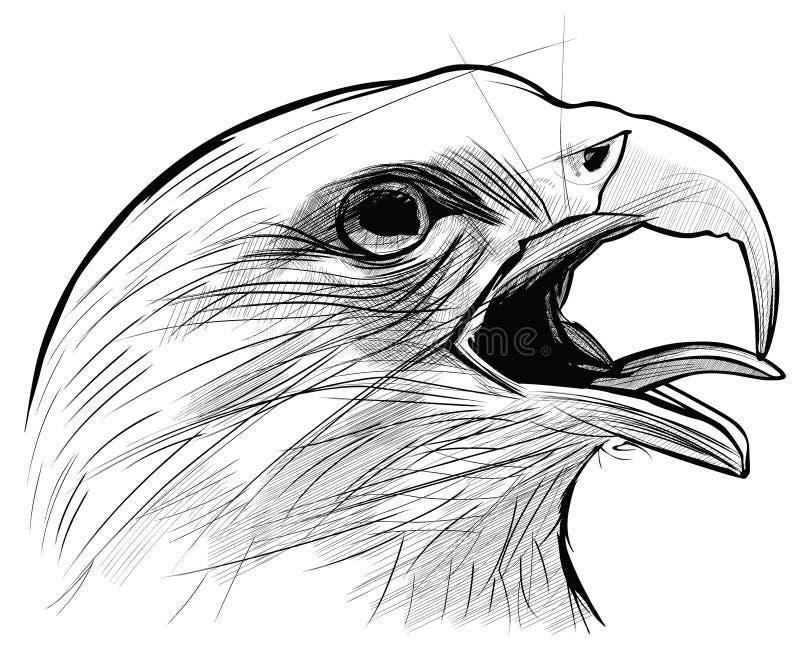 Langkawi orła ciągnącego tuszu ilustracja wektor