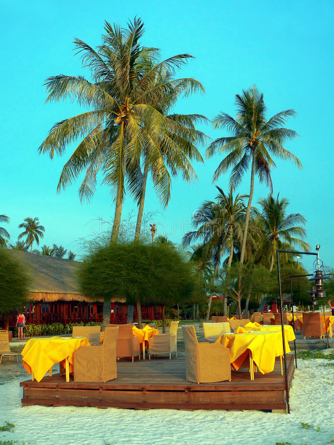 Free Langkawi. Tall Palms Over Openair Restaurant Royalty Free Stock Photo - 1910895