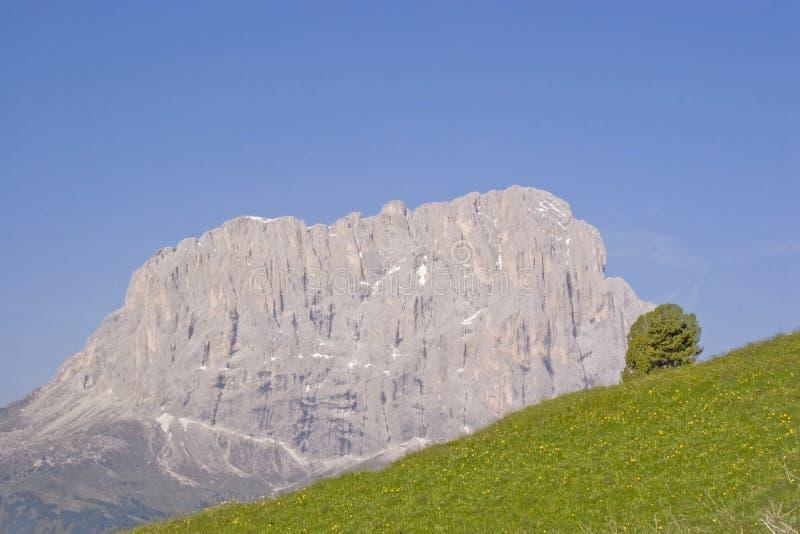 Langkofel in den Dolomit in Süd-Tirol lizenzfreies stockbild