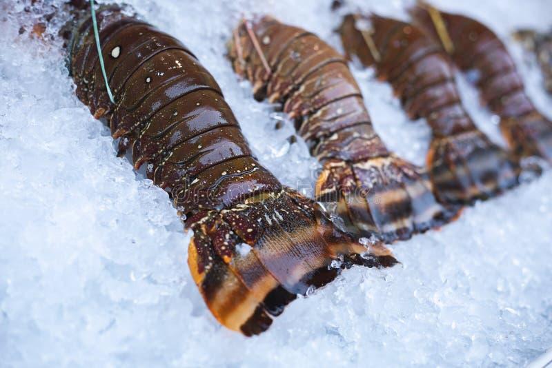 Langostas frescas en el hielo imagen de archivo