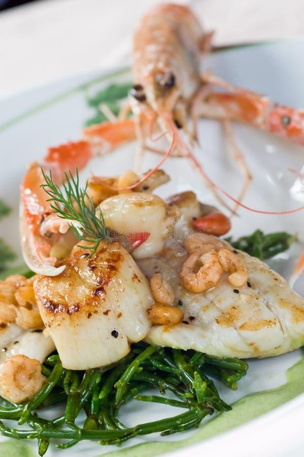 Download Langoustine and scallops stock photo. Image of langoustine - 7781648