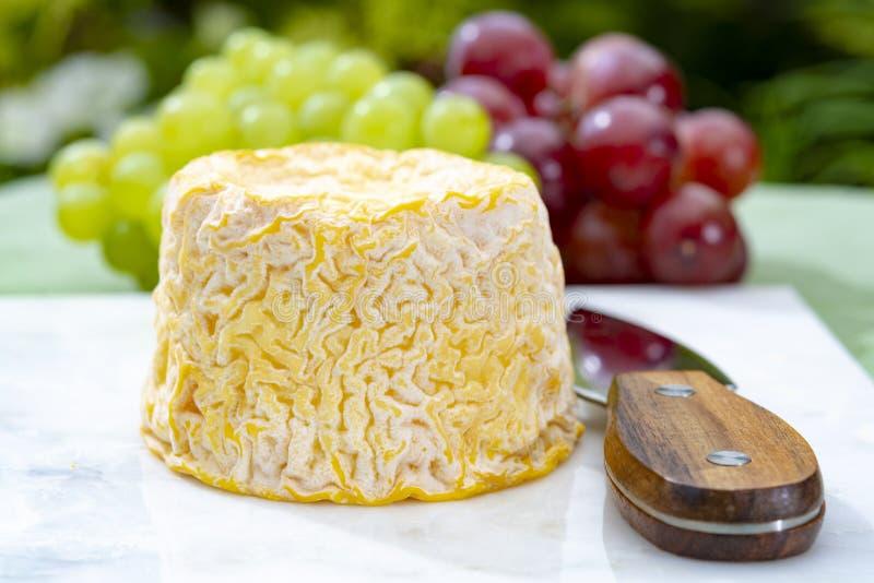 Langres, de Franse zachte kaas van de koemelk, romig en kruimelig met witte schil royalty-vrije stock afbeelding