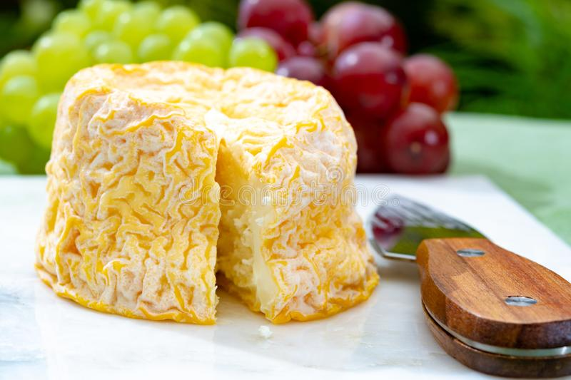 Langres, French cow milk soft cheese, creamy and crumbly with white rind. French cheeses collection royalty free stock photography