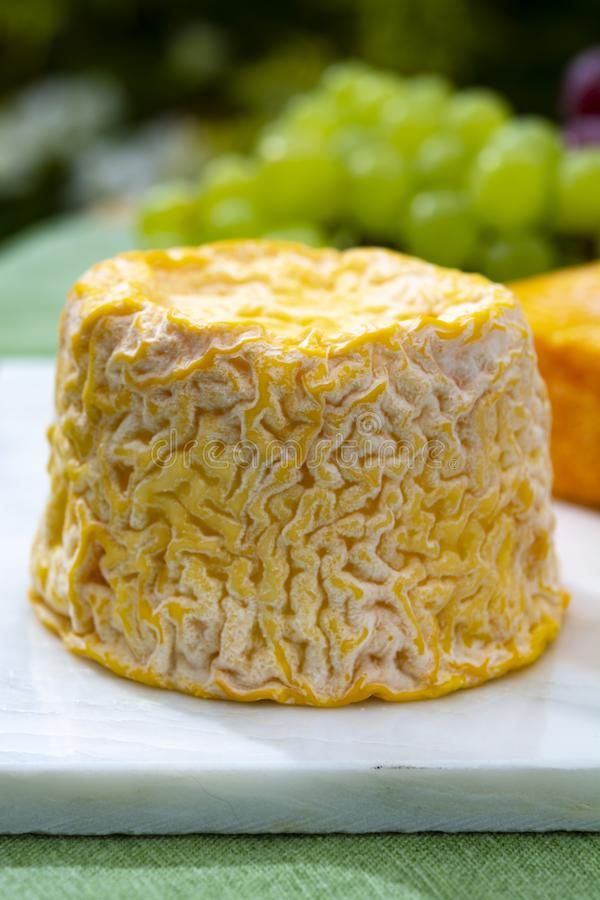 Langres, French cow milk soft cheese, creamy and crumbly with white rind. French cheeses collection stock photos