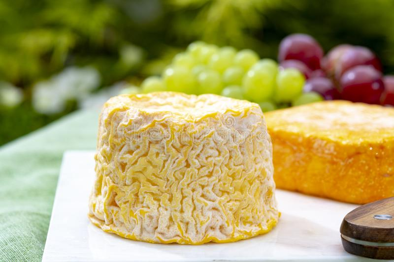 Langres, French cow milk soft cheese, creamy and crumbly with white rind. French cheeses collection royalty free stock images