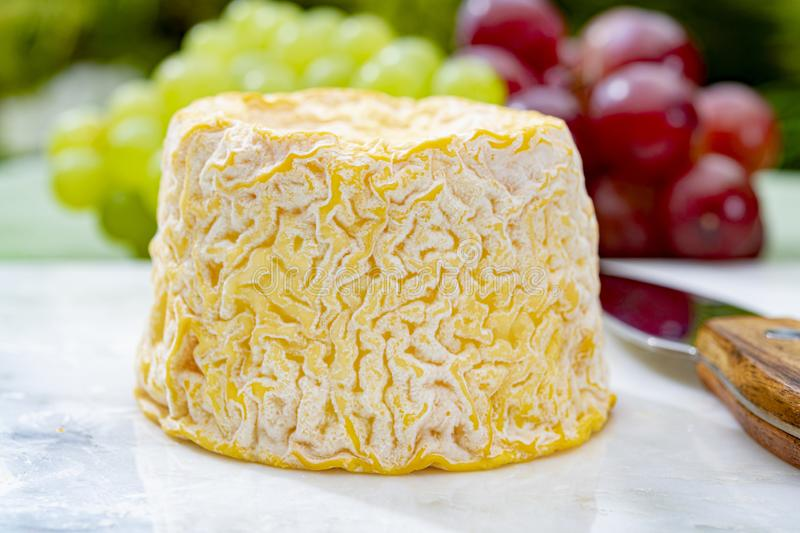 Langres, French cow milk soft cheese, creamy and crumbly with white rind. French cheeses collection royalty free stock photo