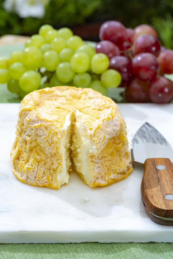 Langres, French cow milk soft cheese, creamy and crumbly with white rind. French cheeses collection stock image