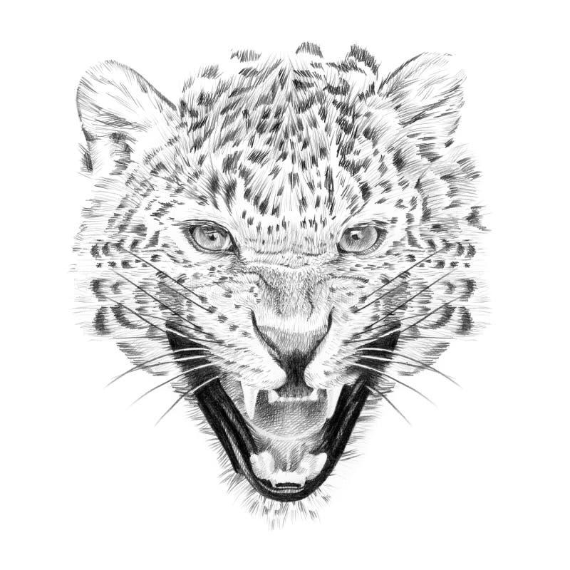 Langs het getrokken portret van luipaard dient potlood in royalty-vrije illustratie
