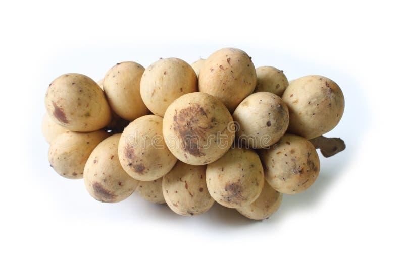 Download Langsat - Fruit Tropical D'Asie Du Sud-Est Photo stock - Image du doux, jaune: 45363602