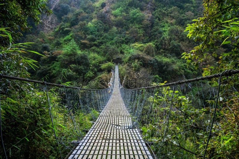 Langtang för Nepal upphängningbro dal arkivfoto