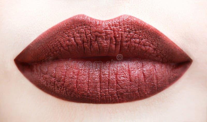 Languettes Lèvre de Brown Fermez-vous des lèvres molles dodues avec le rouge à lèvres brun foncé Cosmétique professionnel de lust image stock