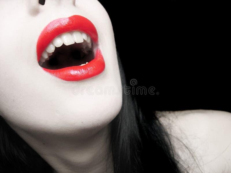 Languettes rouges photo libre de droits