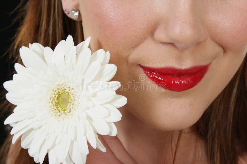 Languettes rouges et fleur blanche photographie stock libre de droits