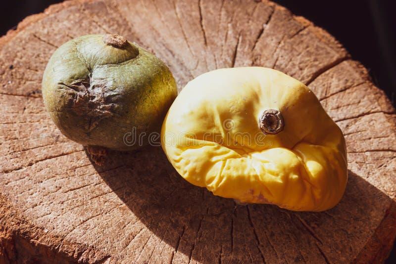 Langzaam verdwenen de pompoenfruit van vorig jaar op een droge houten stomp stock afbeeldingen