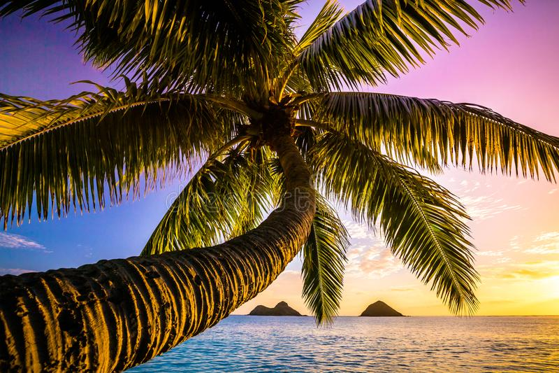 Lanikai Beach Sunrise stock photos