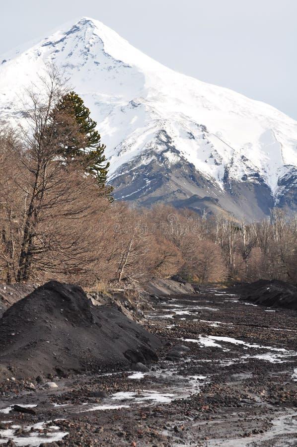 Laninvulkaan, Patagonië royalty-vrije stock afbeelding