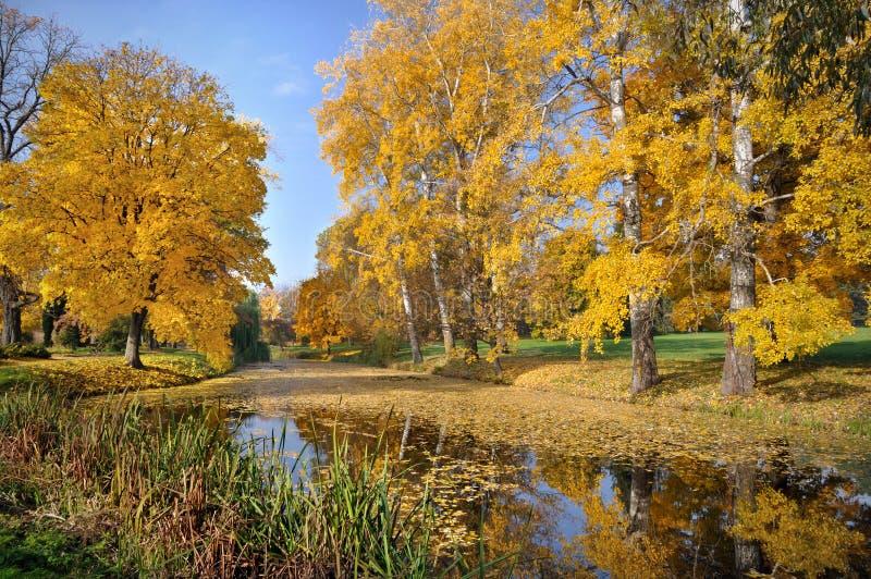 Lanscape осени с озером стоковая фотография