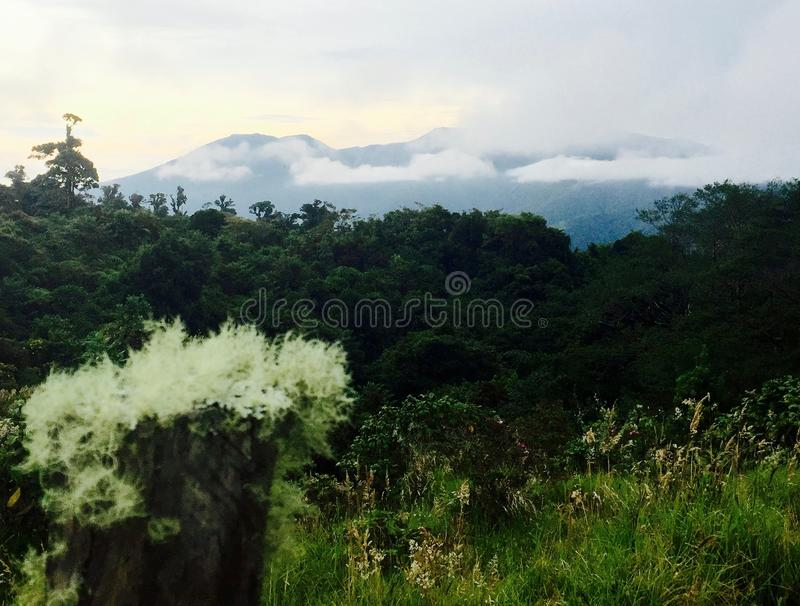 Lanscape of Costarrican Mountains. Breathtaking scene of a rainforest. royalty free stock images