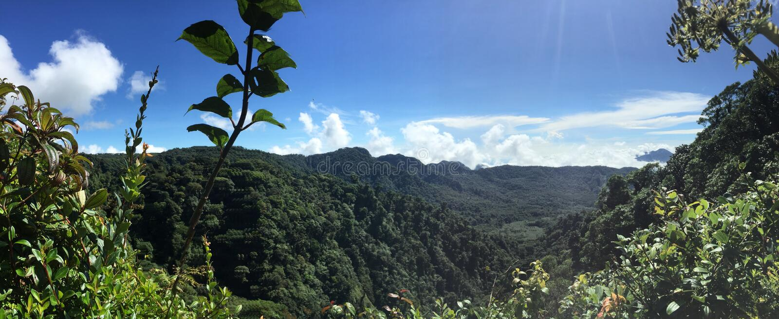 Lanscape of Costarrican Mountains. Breathtaking scene of a rainforest. stock image