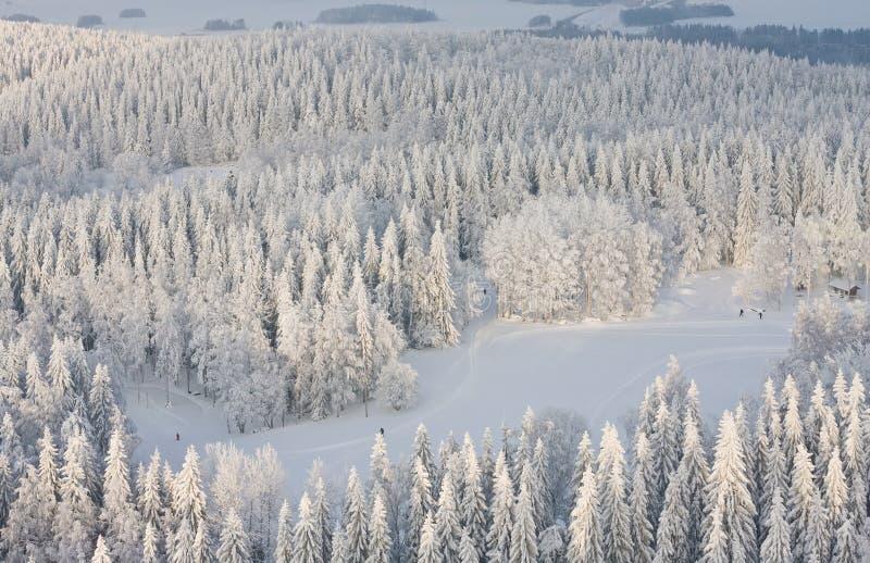Lanscape do inverno em Finlandia foto de stock