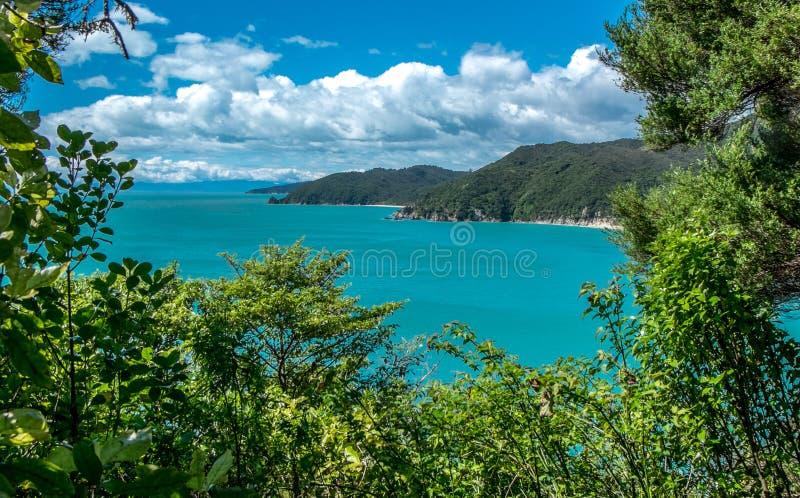 Lanscape med havet, berg och träd Tasman fj?rd, Nelson omr?de, Nya Zeeland royaltyfri bild