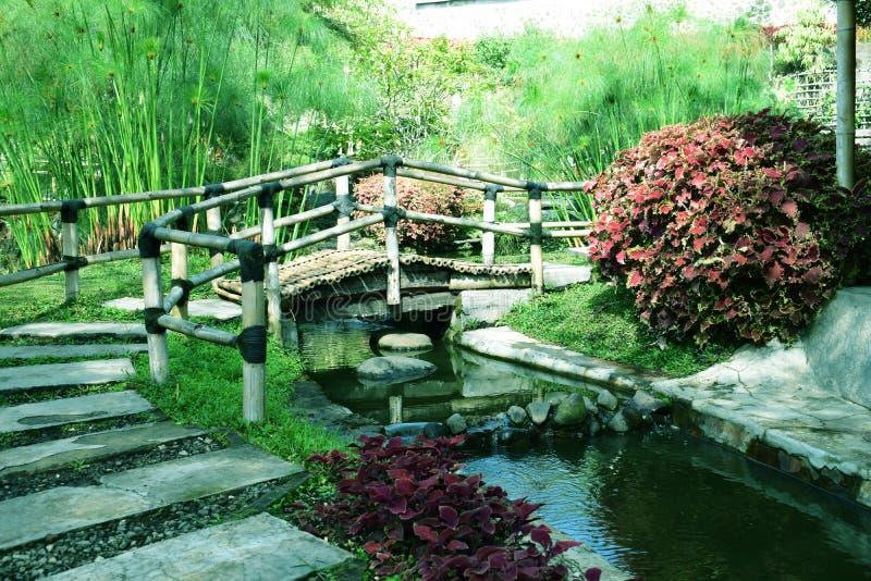 Lanscape piękny ogród od lembang Bandung obraz stock