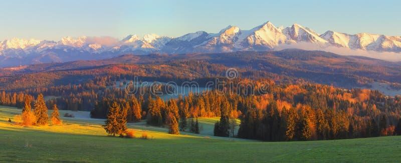 Lanscape soleggiato di autunno fotografia stock libera da diritti