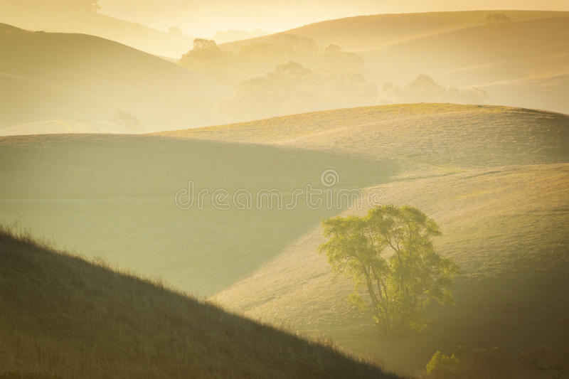 Lanscape in sunrise. Lanscape hills in sunrise in california USA royalty free stock images