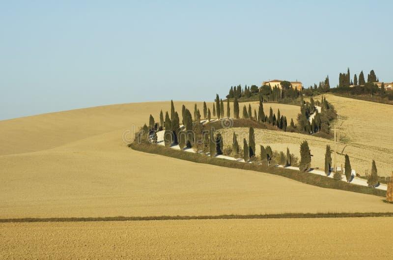 Lanscape toscan photographie stock libre de droits