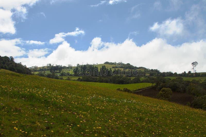 Lanscape vert et ciel photos stock