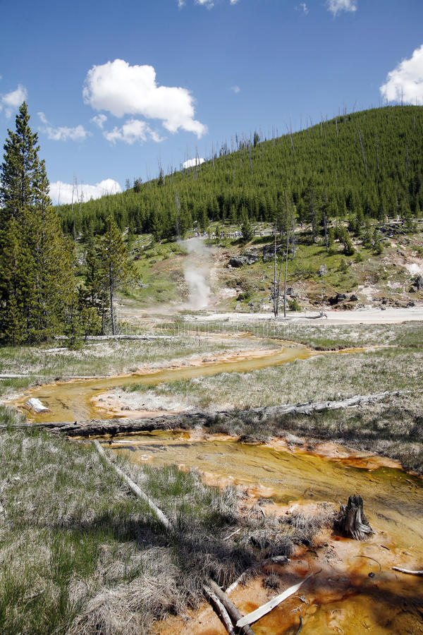 Lanscape view in yellowstone royalty free stock photos