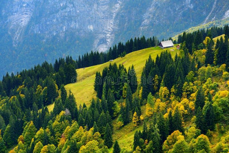 Lansdcape excitante das montanhas, das florestas e de vilas bávaras pequenas na distância Vista cênico de cumes bávaros com mais  foto de stock royalty free